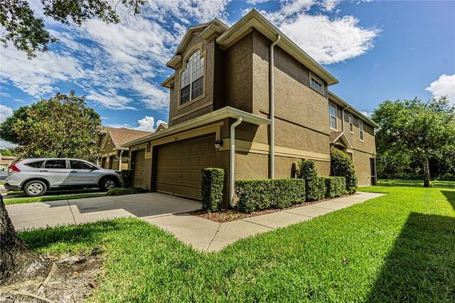 18913 Duquesne Drive, Tampa, FL 33647 (MLS #T3321449) :: Realty Executives