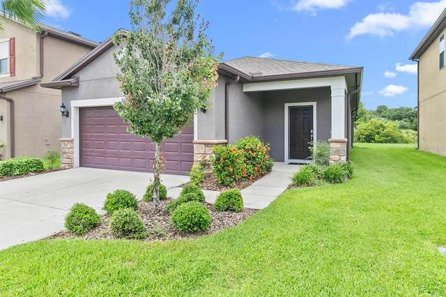 8330 Red Spruce Avenue, Riverview, FL 33578 (MLS #T3321458) :: Century 21 Professional Group