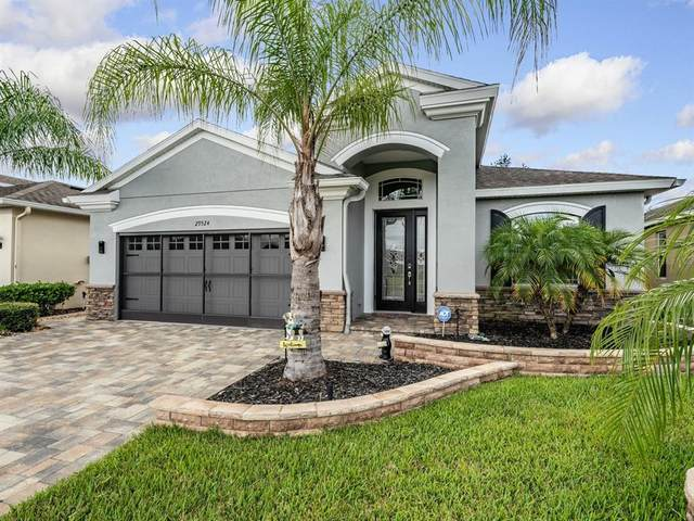 29524 Cochiti Lake Drive, San Antonio, FL 33576 (MLS #T3321467) :: Cartwright Realty