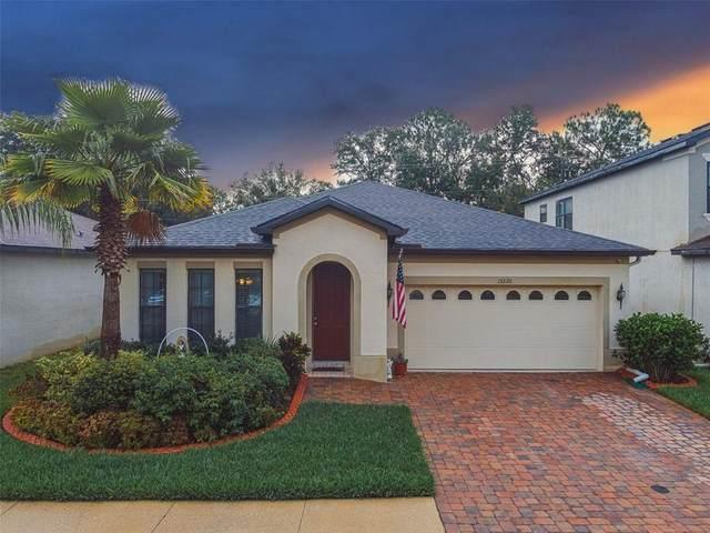 15220 Anguilla Isle Avenue, Tampa, FL 33647 (MLS #T3321472) :: Delgado Home Team at Keller Williams