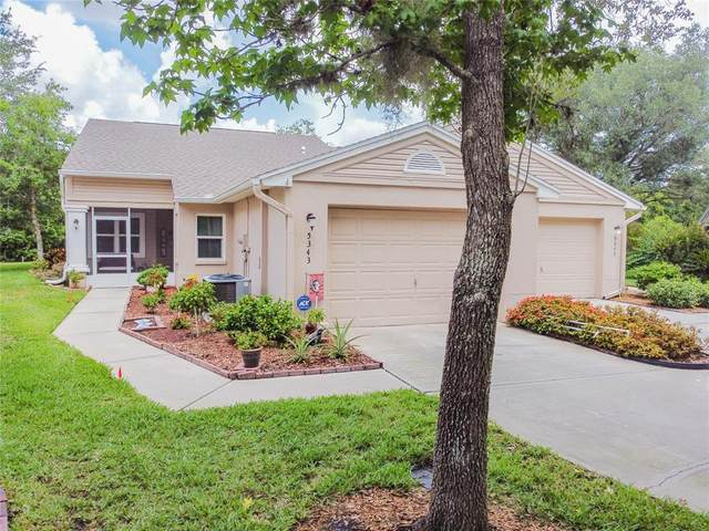 5343 Lochmead Terrace, Zephyrhills, FL 33541 (MLS #T3321473) :: Gate Arty & the Group - Keller Williams Realty Smart