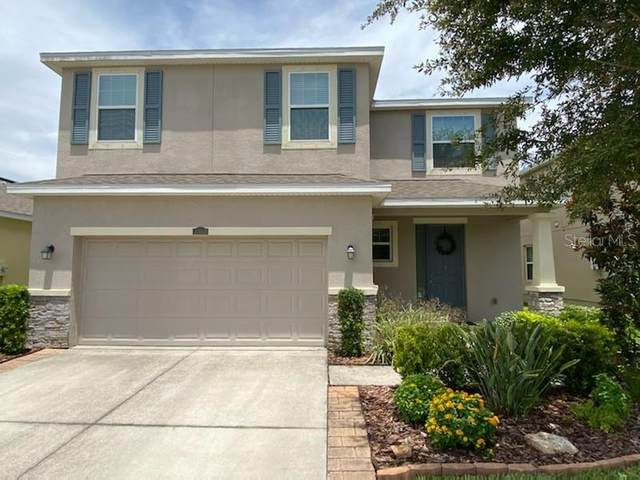 11612 Storywood Drive, Riverview, FL 33578 (MLS #T3321490) :: Vacasa Real Estate