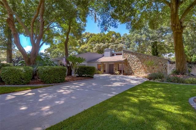 3033 Wister Circle, Valrico, FL 33596 (MLS #T3321496) :: Vacasa Real Estate