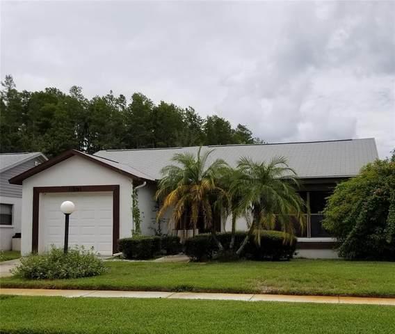 11601 Scotch Pine Drive, New Port Richey, FL 34654 (MLS #T3321504) :: RE/MAX LEGACY