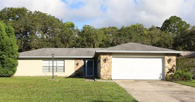 4006 Sandpiper Court, Palm Harbor, FL 34684 (MLS #T3321516) :: Century 21 Professional Group