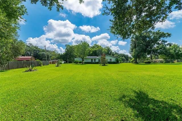 4426 Coats Road, Zephyrhills, FL 33541 (MLS #T3321534) :: The Paxton Group