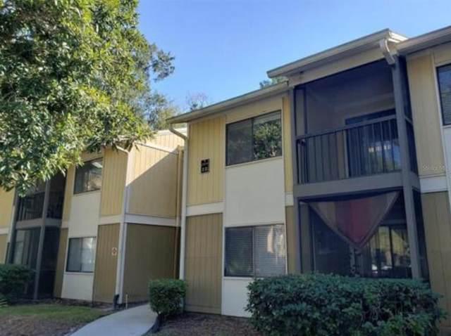 13385 Arbor Pointe Circle #202, Tampa, FL 33617 (MLS #T3321541) :: Century 21 Professional Group