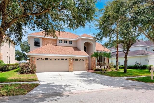 17829 Arbor Creek Drive, Tampa, FL 33647 (MLS #T3321544) :: Team Bohannon