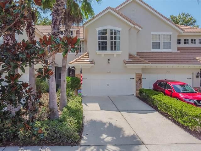 14417 Mirabelle Vista Circle, Tampa, FL 33626 (MLS #T3321546) :: Century 21 Professional Group