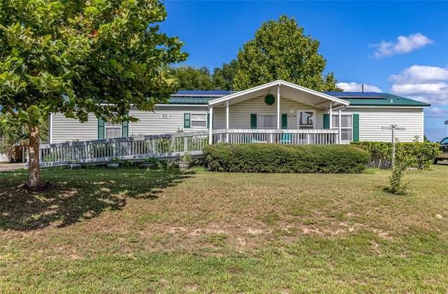 37530 Quail Ridge Circle, Leesburg, FL 34788 (MLS #T3321547) :: The Paxton Group