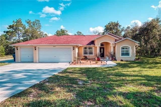 12037 Manassas Avenue, Weeki Wachee, FL 34614 (MLS #T3321551) :: Engel & Volkers