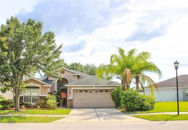 11304 Flora Springs Drive, Riverview, FL 33579 (MLS #T3321552) :: Century 21 Professional Group