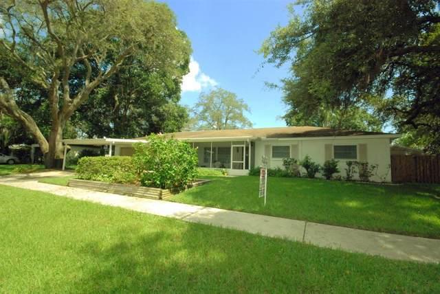 3816 Sunnybank Drive, Valrico, FL 33594 (MLS #T3321570) :: Visionary Properties Inc