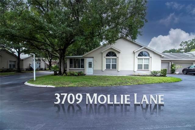 3709 Mollie Lane #3709, Ruskin, FL 33573 (MLS #T3321587) :: Premium Properties Real Estate Services