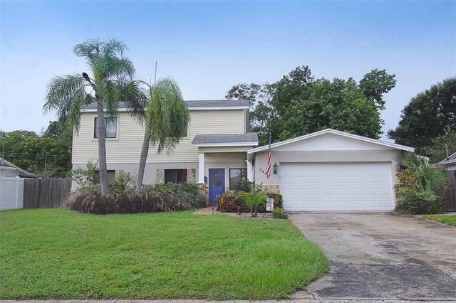 7480 Oak Street NE, St Petersburg, FL 33702 (MLS #T3321588) :: Lockhart & Walseth Team, Realtors