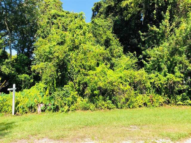Blossom Ave, Tampa, FL 33614 (MLS #T3321625) :: Global Properties Realty & Investments