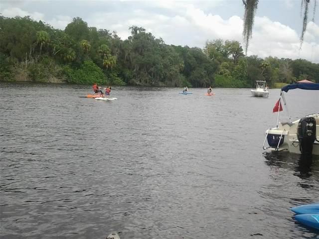 Stoner Road, Riverview, FL 33569 (MLS #T3321634) :: Expert Advisors Group