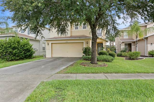 17531 Sandgate Court, Land O Lakes, FL 34638 (MLS #T3321637) :: Godwin Realty Group