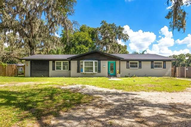204 Larson Avenue, Brandon, FL 33510 (MLS #T3321658) :: Everlane Realty