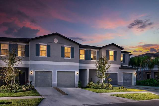 11770 Dumaine Valley Road, Riverview, FL 33579 (MLS #T3321665) :: Realty Executives