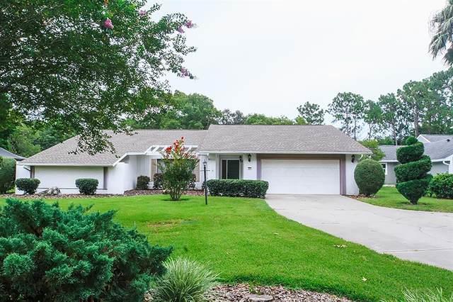 3 Byrsonima Court W, Homosassa, FL 34446 (MLS #T3321667) :: Young Real Estate