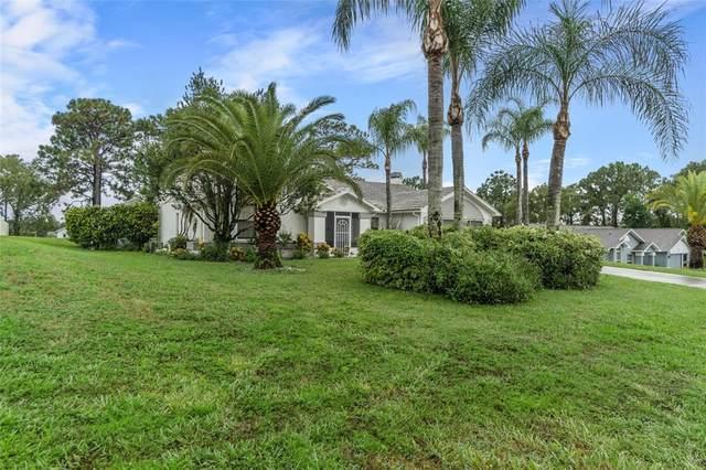 13238 Lauren Drive, Spring Hill, FL 34609 (MLS #T3321675) :: Everlane Realty