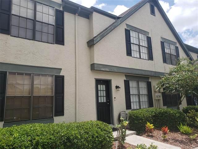16533 Brigadoon Drive, Tampa, FL 33618 (MLS #T3321682) :: McConnell and Associates