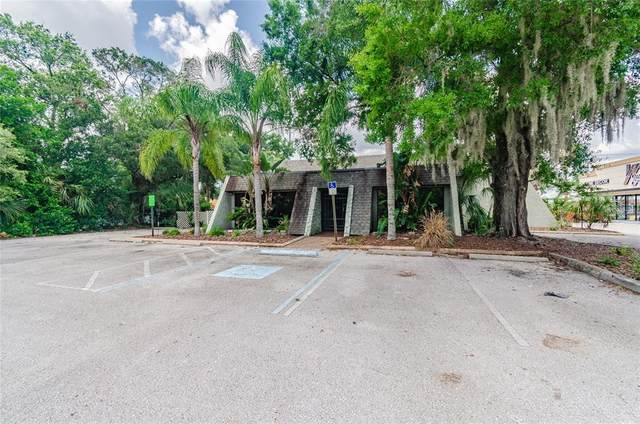 2510 W Waters Avenue, Tampa, FL 33614 (MLS #T3321715) :: Young Real Estate