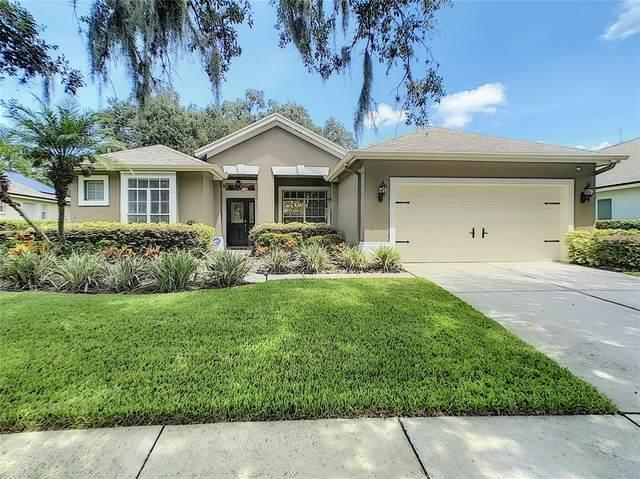 3016 Bent Creek Drive, Valrico, FL 33596 (MLS #T3321719) :: The Hesse Team