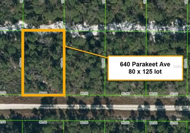 640 Parakeet Avenue, Sebring, FL 33872 (MLS #T3321732) :: Realty Executives