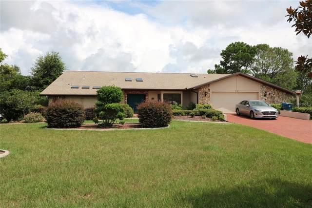 231 Planter Road, Spring Hill, FL 34606 (MLS #T3321733) :: Dalton Wade Real Estate Group