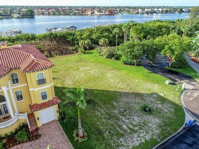 6101 Lagomar Lane, Apollo Beach, FL 33572 (MLS #T3321736) :: Delgado Home Team at Keller Williams
