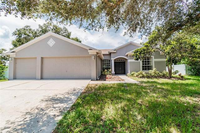 10446 Ashley Oaks Drive, Riverview, FL 33578 (MLS #T3321737) :: McConnell and Associates