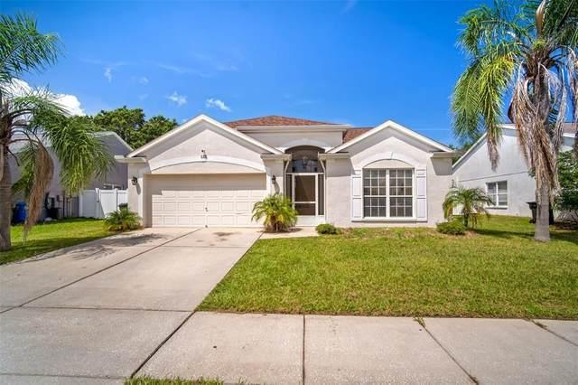 115 Island Water Way, Apollo Beach, FL 33572 (MLS #T3321758) :: Vacasa Real Estate