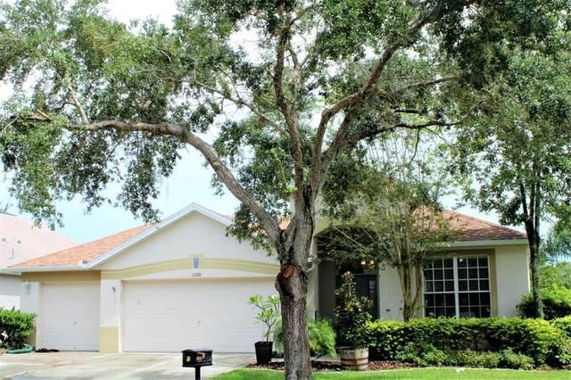 16326 Bridgewalk Drive, Lithia, FL 33547 (MLS #T3321759) :: The Duncan Duo Team