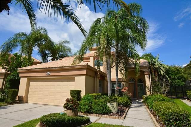 9336 Fairway Lakes Court, Tampa, FL 33647 (MLS #T3321774) :: Delgado Home Team at Keller Williams
