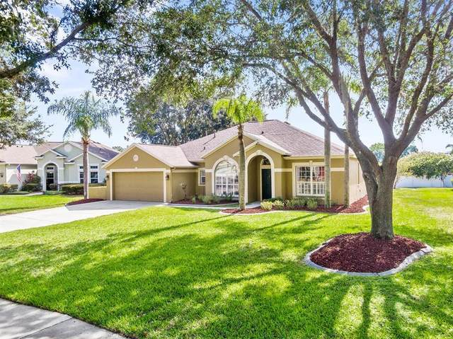 9404 Ayleshire Place, Riverview, FL 33569 (MLS #T3321855) :: Everlane Realty