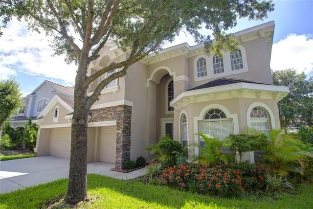 17803 Arbor Creek Drive, Tampa, FL 33647 (MLS #T3321870) :: Delgado Home Team at Keller Williams