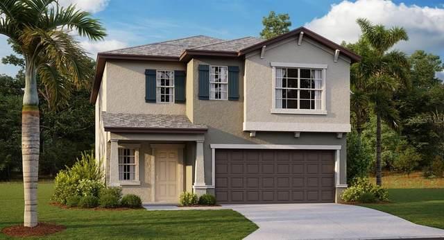 5512 Appleton Shore Drive, Apollo Beach, FL 33572 (MLS #T3321914) :: Delgado Home Team at Keller Williams