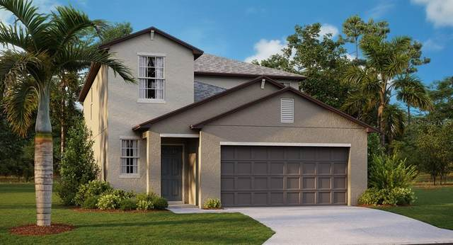 5251 White Chicory Drive, Apollo Beach, FL 33572 (MLS #T3321919) :: Delgado Home Team at Keller Williams