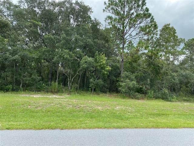 12313 Hoodridge Court, Weeki Wachee, FL 34614 (MLS #T3321947) :: Cartwright Realty