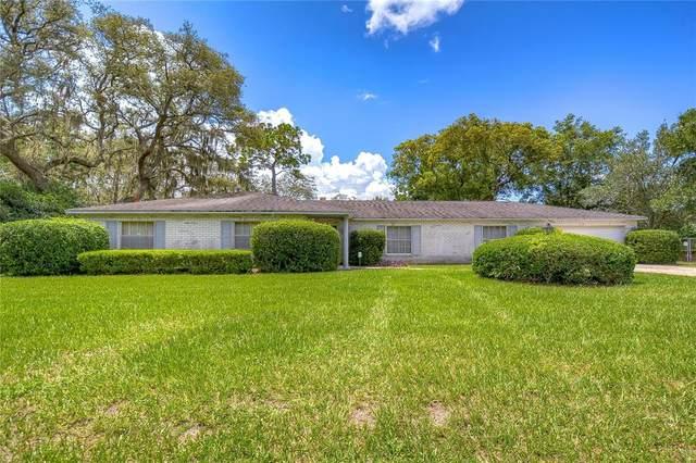 617 Greenbriar Drive, Brandon, FL 33511 (MLS #T3321959) :: Zarghami Group