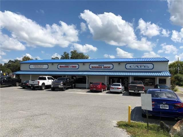 5018 Gall Boulevard, Zephyrhills, FL 33542 (MLS #T3322002) :: Zarghami Group