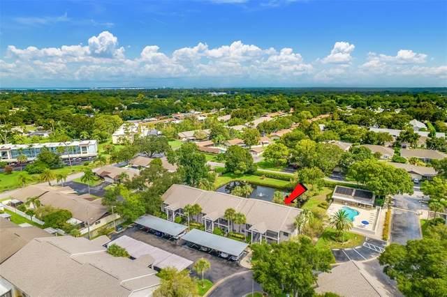 2119 Elm Street #107, Dunedin, FL 34698 (MLS #T3322019) :: Burwell Real Estate