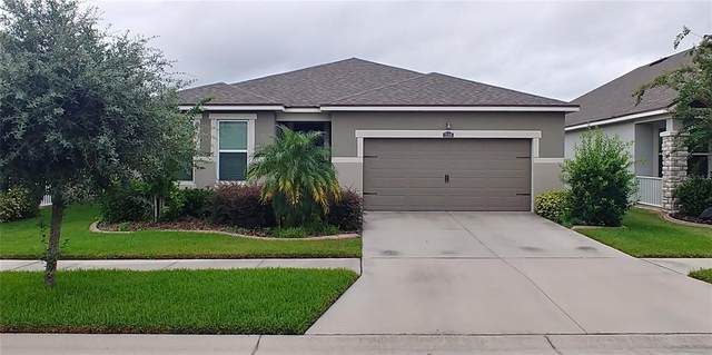12318 Eagle Swoop Place, Riverview, FL 33579 (MLS #T3322064) :: The Duncan Duo Team