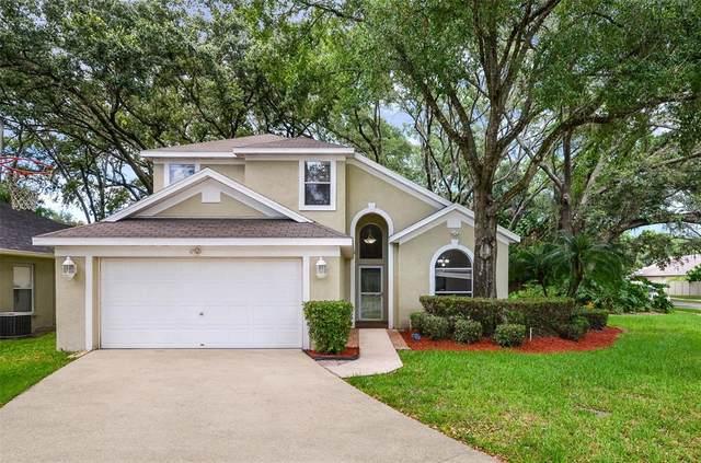 4607 Whispering Park Lane, Tampa, FL 33614 (MLS #T3322069) :: Zarghami Group