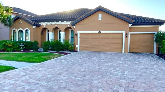 13216 Fawn Lily Drive, Riverview, FL 33579 (MLS #T3322088) :: The Duncan Duo Team