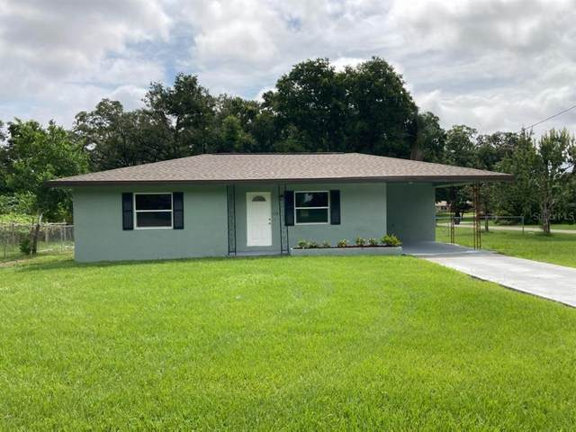 113 Morningside Drive, Valrico, FL 33594 (MLS #T3322162) :: Young Real Estate
