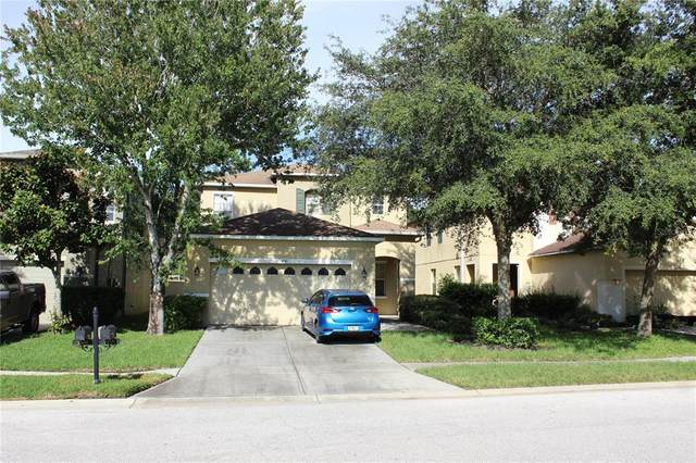 Land O Lakes, FL 34638 :: Everlane Realty