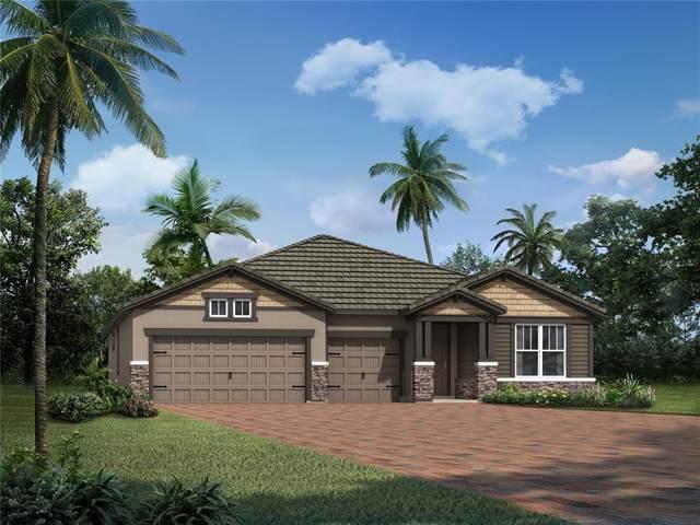 5624 Long Shore Loop #220, Sarasota, FL 34238 (MLS #T3322345) :: Everlane Realty